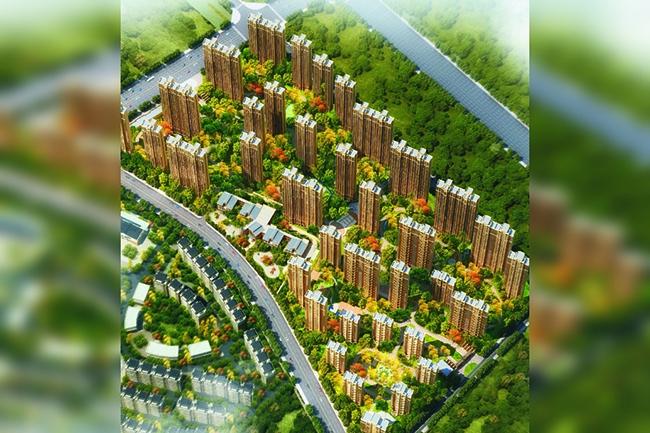 九龙湖花园鸟瞰图